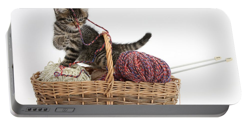 Nature Portable Battery Charger featuring the photograph Tabby Kitten Playing With Knitting Wool by Mark Taylor
