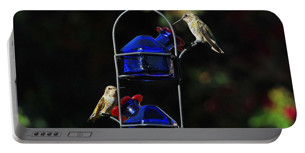 Hummers Portable Battery Charger featuring the photograph Table For Two by Lynn Bauer