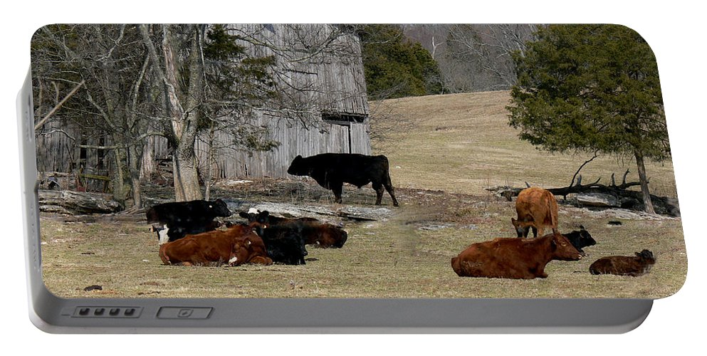 Barn Portable Battery Charger featuring the photograph Taking It Easy by Ericamaxine Price