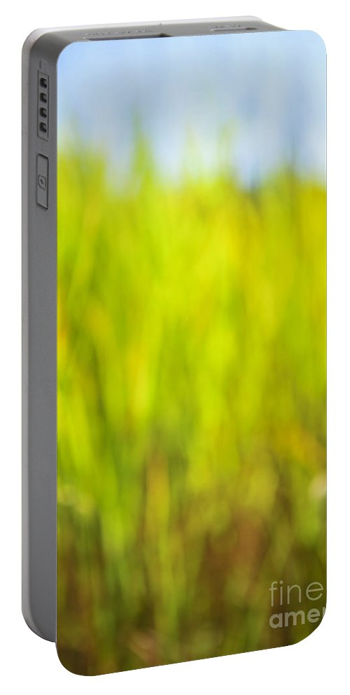 Grass Portable Battery Charger featuring the photograph Tall Grass by Elena Elisseeva