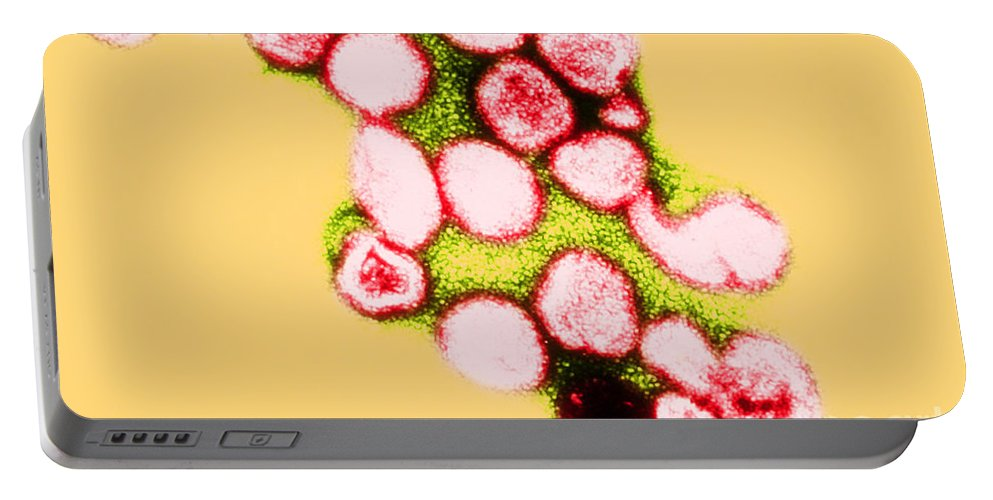 Micrograph Portable Battery Charger featuring the photograph Tem Of Rubella German Measles by Science Source
