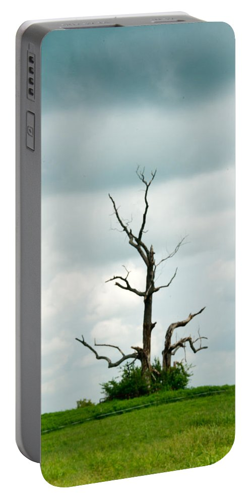 Lone Portable Battery Charger featuring the photograph Tennessee Lone Tree by Douglas Barnett