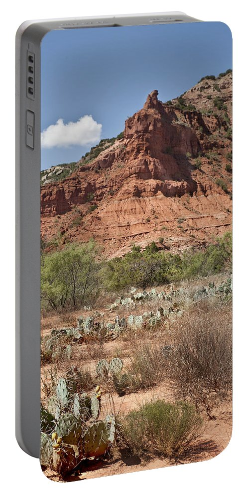 Best Sellers Portable Battery Charger featuring the photograph Texas Tulips by Melany Sarafis