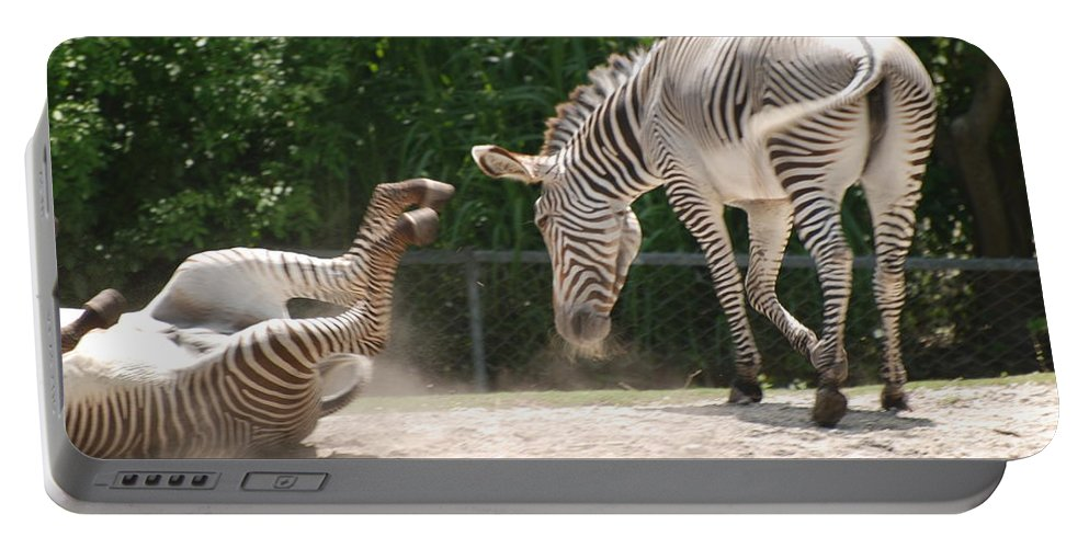 Animal Portable Battery Charger featuring the photograph The Back End by Rob Hans