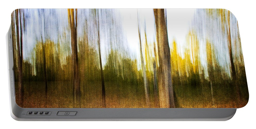 Trees Portable Battery Charger featuring the photograph The Backyard by Scott Pellegrin