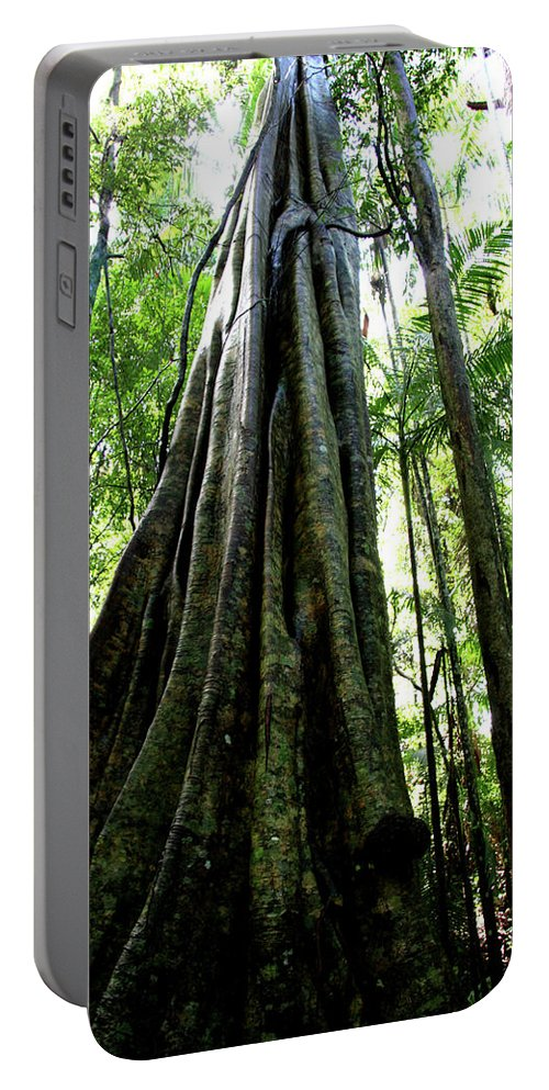 Photography Portable Battery Charger featuring the photograph The Big Grey Gun by Karen Elzinga