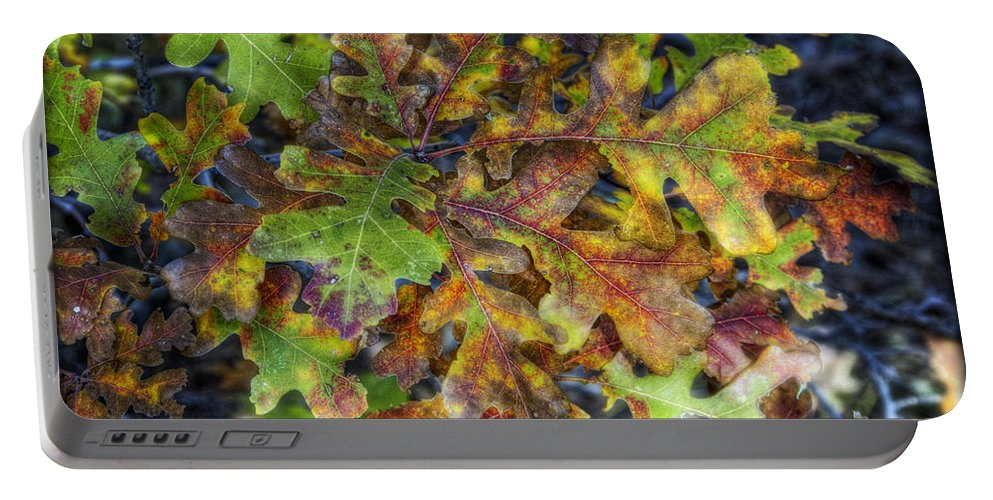 Autumn Portable Battery Charger featuring the photograph The Colors Of Autumn by Saija Lehtonen