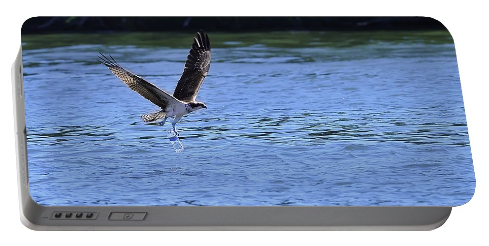 Ospreys Diving Portable Battery Charger featuring the photograph The Environmentalist Osprey by Randall Branham