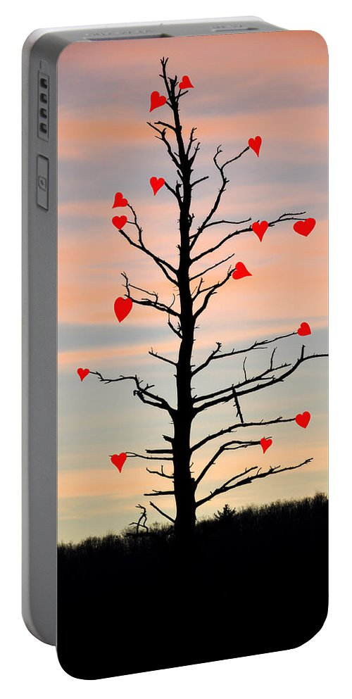 The Fall Of Love Portable Battery Charger featuring the photograph The Fall Of Love by Bill Cannon