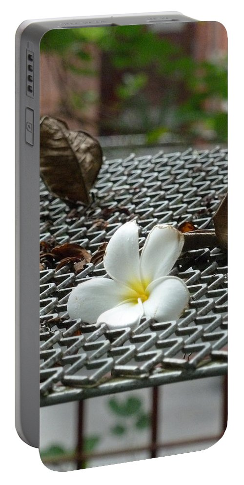 Singapore Portable Battery Charger featuring the photograph The Fallen Flower by Steve Taylor