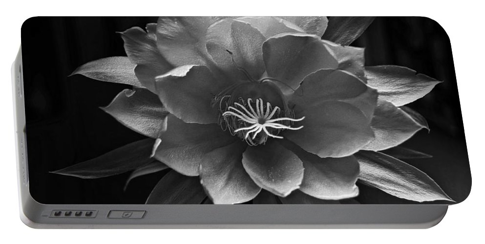 Flower Of One Night Portable Battery Charger featuring the photograph The Flower Of One Night by Tom Bell