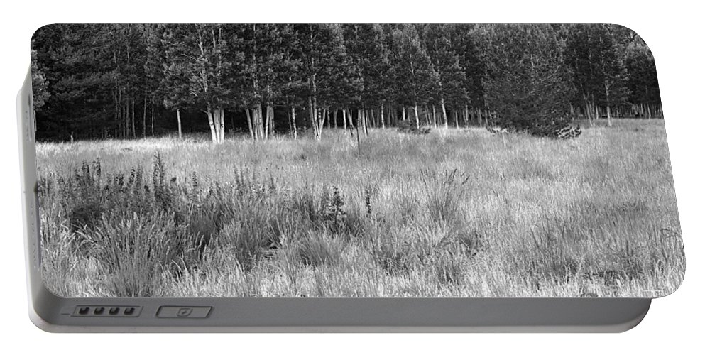 Landscape Portable Battery Charger featuring the photograph The Meadow Black And White by Phyllis Denton