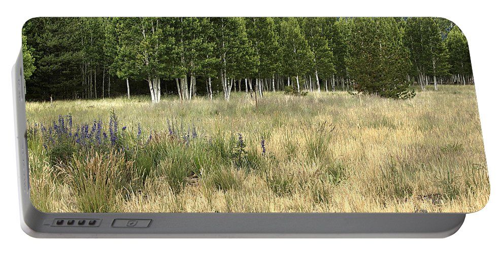 Landscape Portable Battery Charger featuring the photograph The Meadow by Phyllis Denton