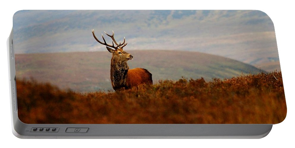 Red Deer Stag Portable Battery Charger featuring the photograph The Monarch by Gavin Macrae