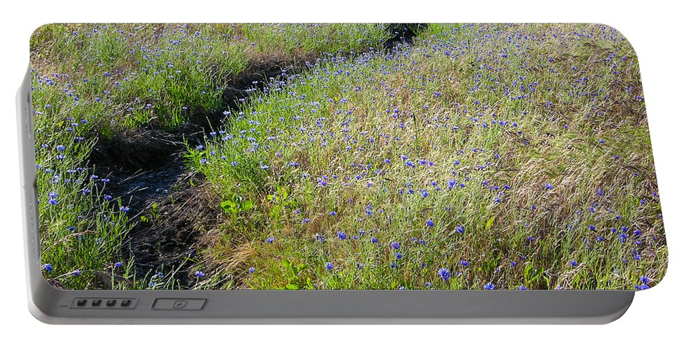 Path Portable Battery Charger featuring the photograph The Path by Mike Penney