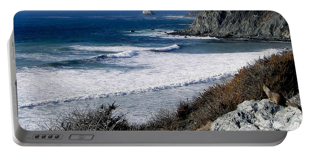 Seascapes Portable Battery Charger featuring the photograph The Sea Squirrel by Karen Wiles