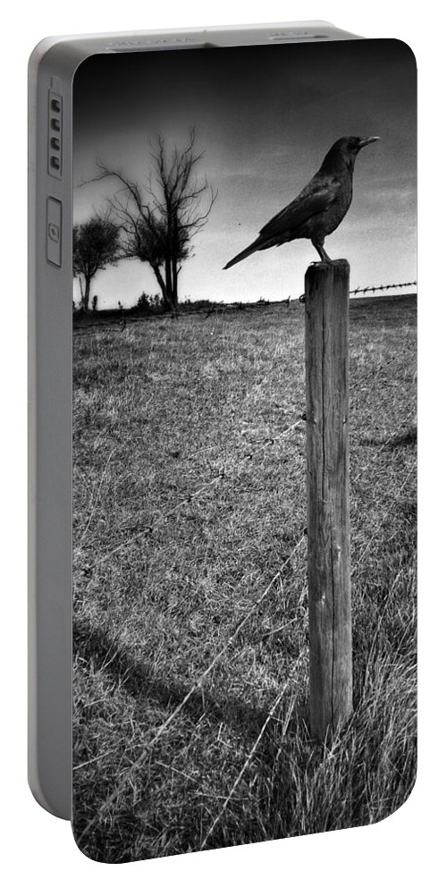 Crow Portable Battery Charger featuring the photograph The Silent Warn by The Artist Project