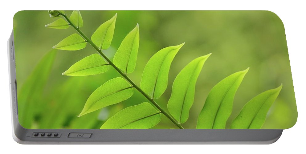 Fern Portable Battery Charger featuring the photograph The Tip Of A Fern by JD Grimes