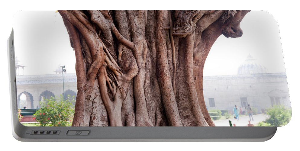 Tree Portable Battery Charger featuring the photograph The Twisted And Gnarled Stump And Stem Of A Large Tree Inside The Qutub Minar Compound by Ashish Agarwal