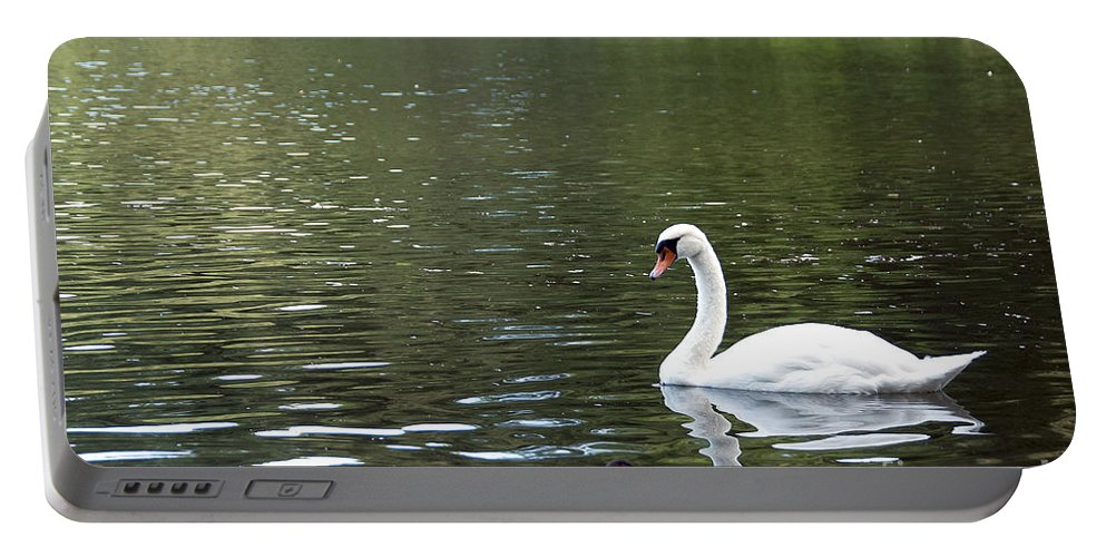 Swan Photo Portable Battery Charger featuring the photograph The White Swan by Ivy Ho