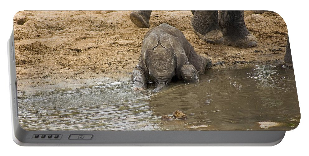 Africa Portable Battery Charger featuring the photograph Thirsty Young Elephant by Darcy Michaelchuk