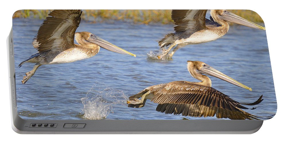 Pelicans Portable Battery Charger featuring the photograph Three Pelicans Taking Off by TJ Baccari