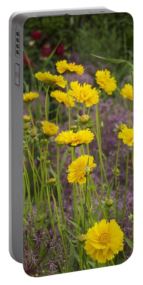 Tick Seed Portable Battery Charger featuring the photograph Tick Seed 2229 by Michael Peychich