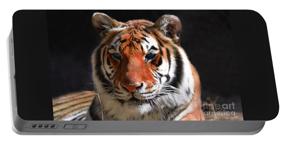 Tiger Portable Battery Charger featuring the photograph Tiger Blue Eyes by Rebecca Margraf