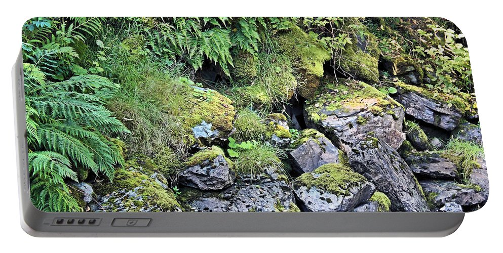Tongass National Forest Portable Battery Charger featuring the photograph Tongass Fern by Kristin Elmquist