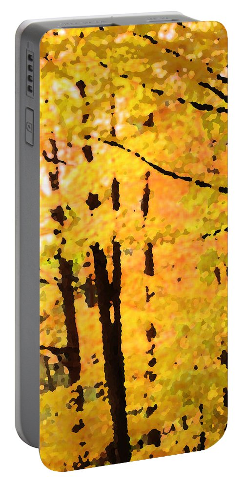 Autumn Portable Battery Charger featuring the photograph Too Much by Ian MacDonald