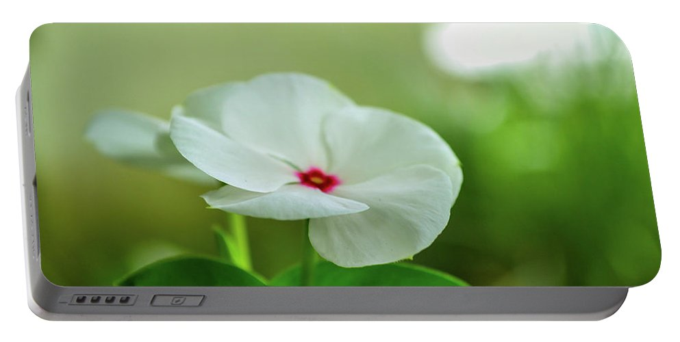 Flowers Portable Battery Charger featuring the photograph Touch Of Red by Shannon Harrington