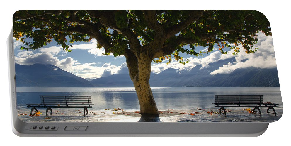 Tree Portable Battery Charger featuring the photograph Tree And Benches by Mats Silvan