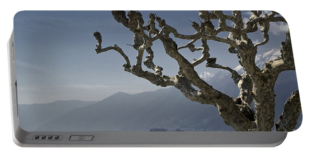 Tree Portable Battery Charger featuring the photograph Tree And Mountain by Mats Silvan