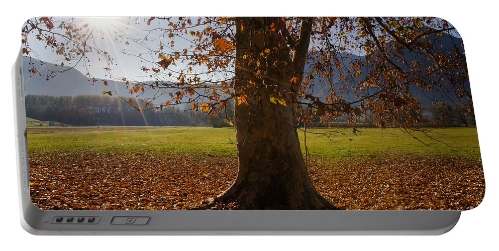 Tree Portable Battery Charger featuring the photograph Tree With Autumn Leaves by Mats Silvan