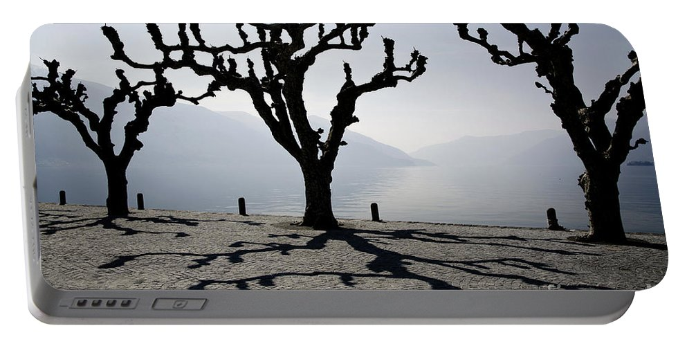 Tree Portable Battery Charger featuring the photograph Trees With Shadows by Mats Silvan