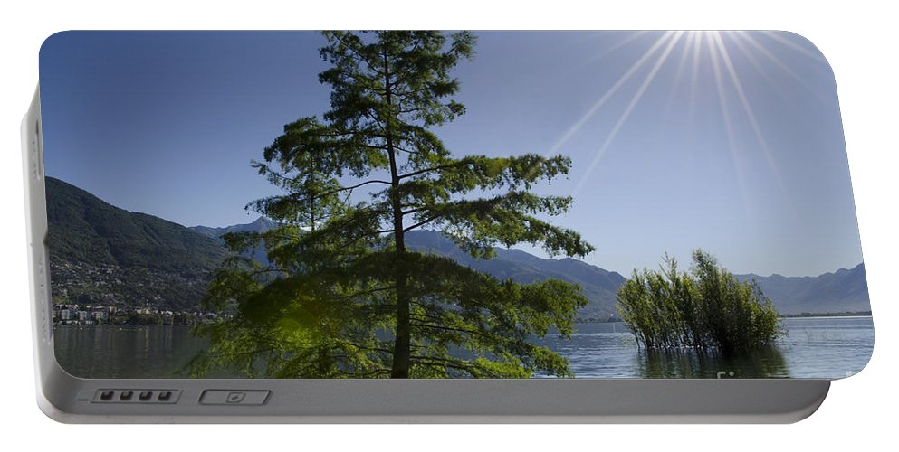 Trees Portable Battery Charger featuring the photograph Trees With Sunbeam by Mats Silvan