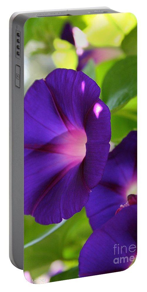 Plant Portable Battery Charger featuring the photograph Trifecta by Susan Herber