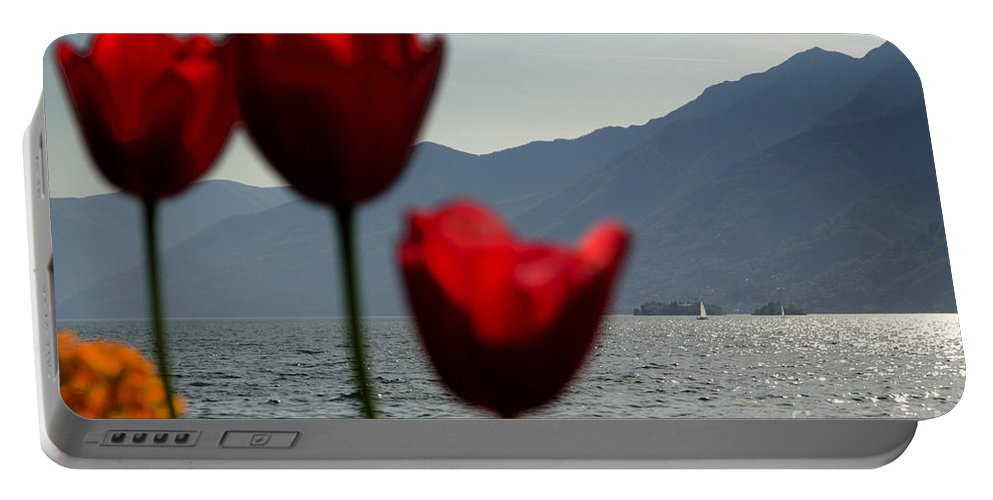 Islands Portable Battery Charger featuring the photograph Tulip And Lake by Mats Silvan