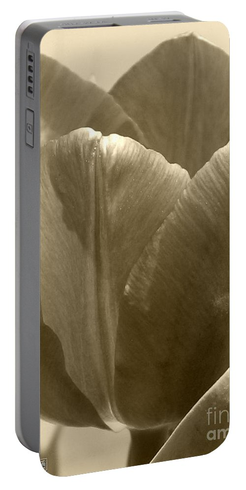 Tulip Portable Battery Charger featuring the photograph Tulip Named Passionale by J McCombie