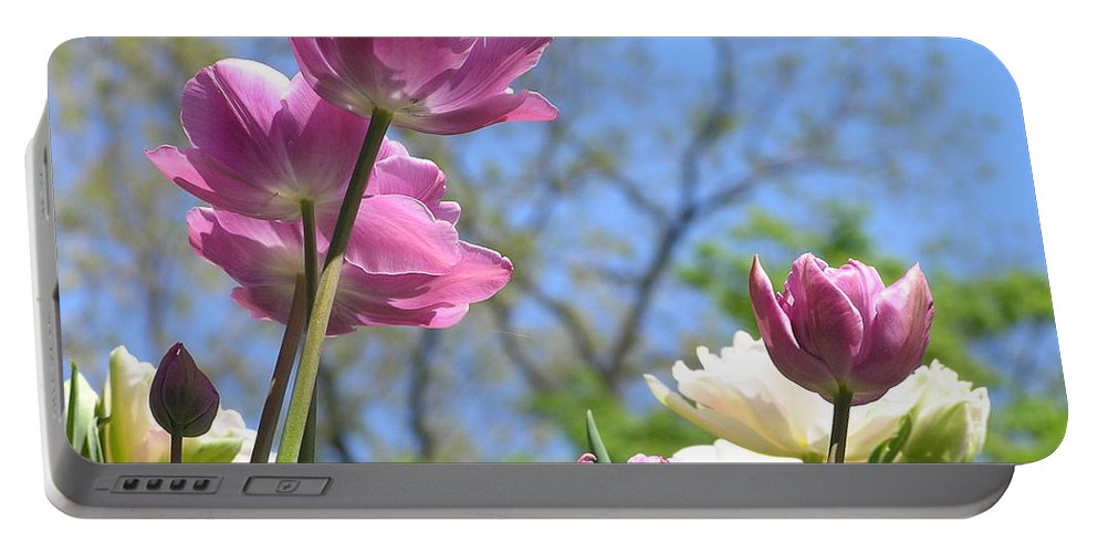 Violet Portable Battery Charger featuring the photograph Tulips In The Sun by Stefa Charczenko