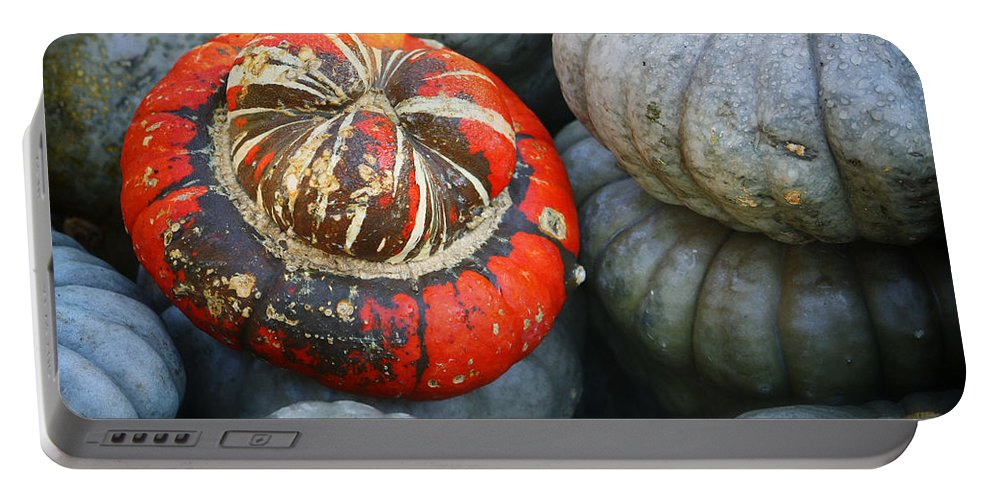 Autumn Portable Battery Charger featuring the photograph Turban Pumpkin by Joan Carroll