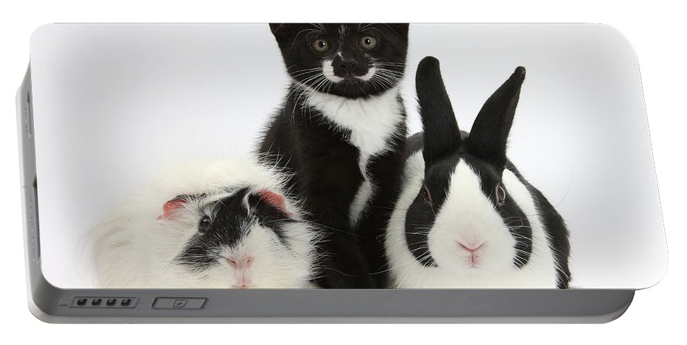 Nature Portable Battery Charger featuring the photograph Tuxedo Kitten With Black Dutch Rabbit by Mark Taylor