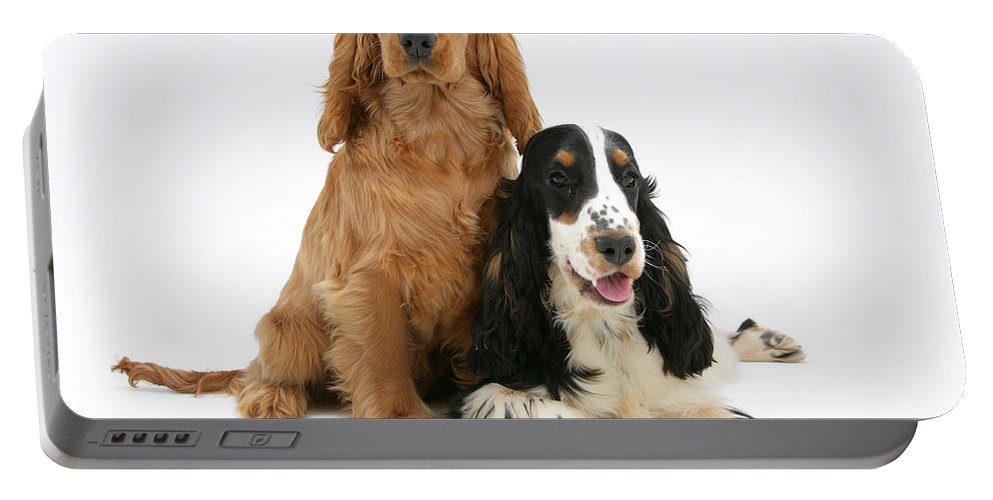 Animal Portable Battery Charger featuring the photograph Two Cocker Spaniels by Mark Taylor