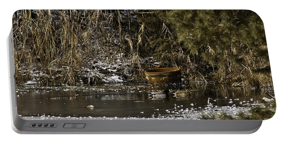 Usa Portable Battery Charger featuring the photograph Two Ducks And A Tub by LeeAnn McLaneGoetz McLaneGoetzStudioLLCcom