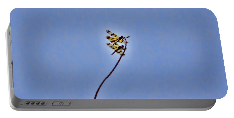 Dragonflies Portable Battery Charger featuring the photograph Two-of-a-kind by Douglas Barnard