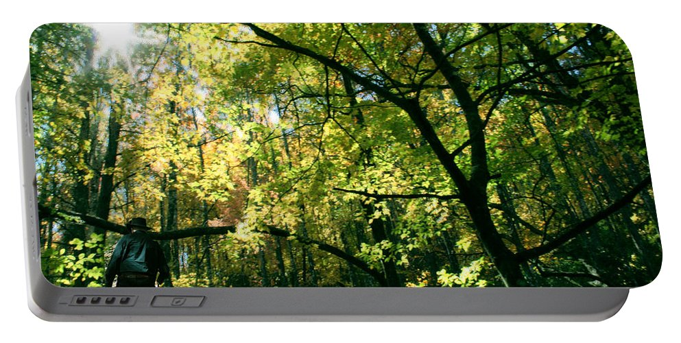 Under A Golden Canopy Portable Battery Charger featuring the photograph Under a Golden Canopy by Seth Weaver