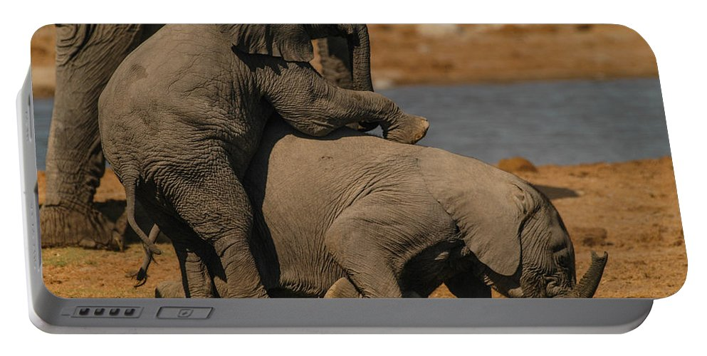 Focussed Portable Battery Charger featuring the photograph Us Together by Alistair Lyne