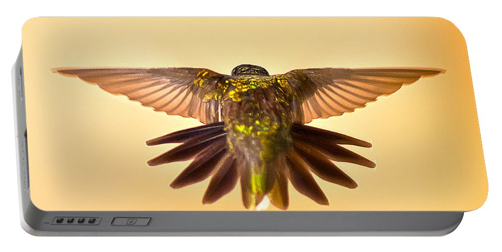 Wings Of Hummingbirds Portable Battery Charger featuring the photograph Usaf Hummingbirds Wings by Randall Branham