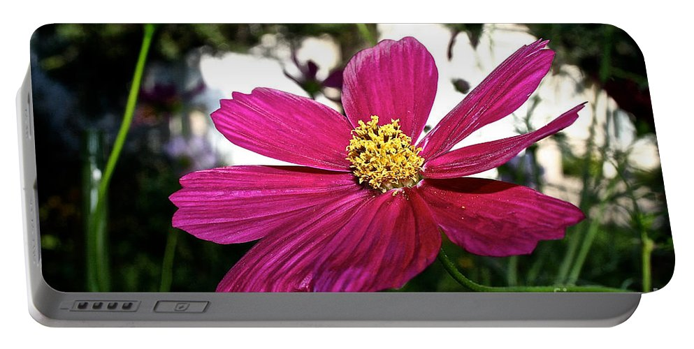 Plant Portable Battery Charger featuring the photograph Vibrant Cosmos by Susan Herber