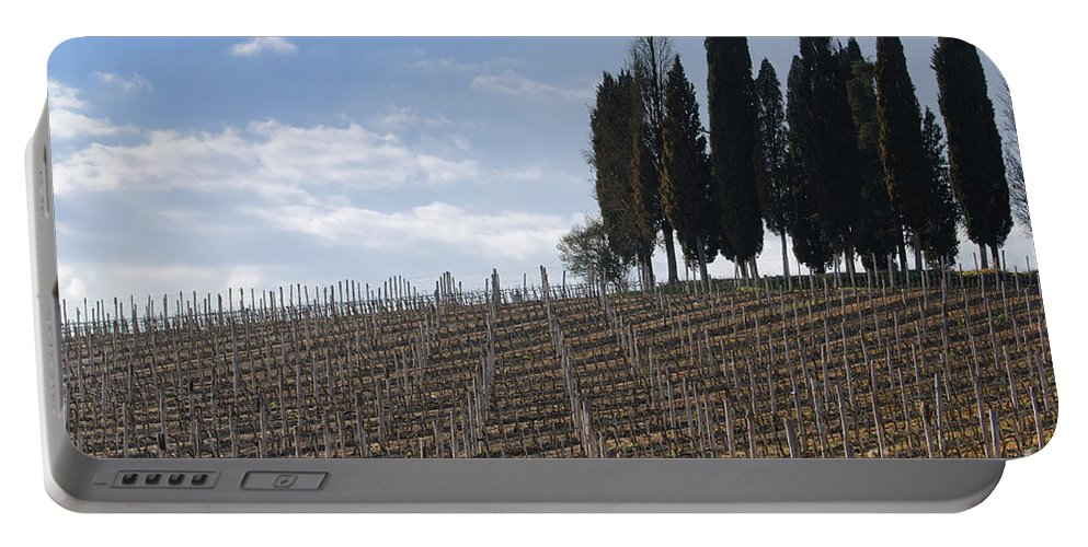 Vineyard Portable Battery Charger featuring the photograph Vineyard With Cypress Trees by Mats Silvan